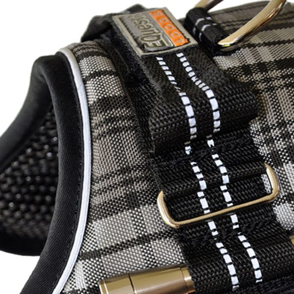 Equest Premium Harness color Tartan size L with text labels that can be personalized by K9-label
